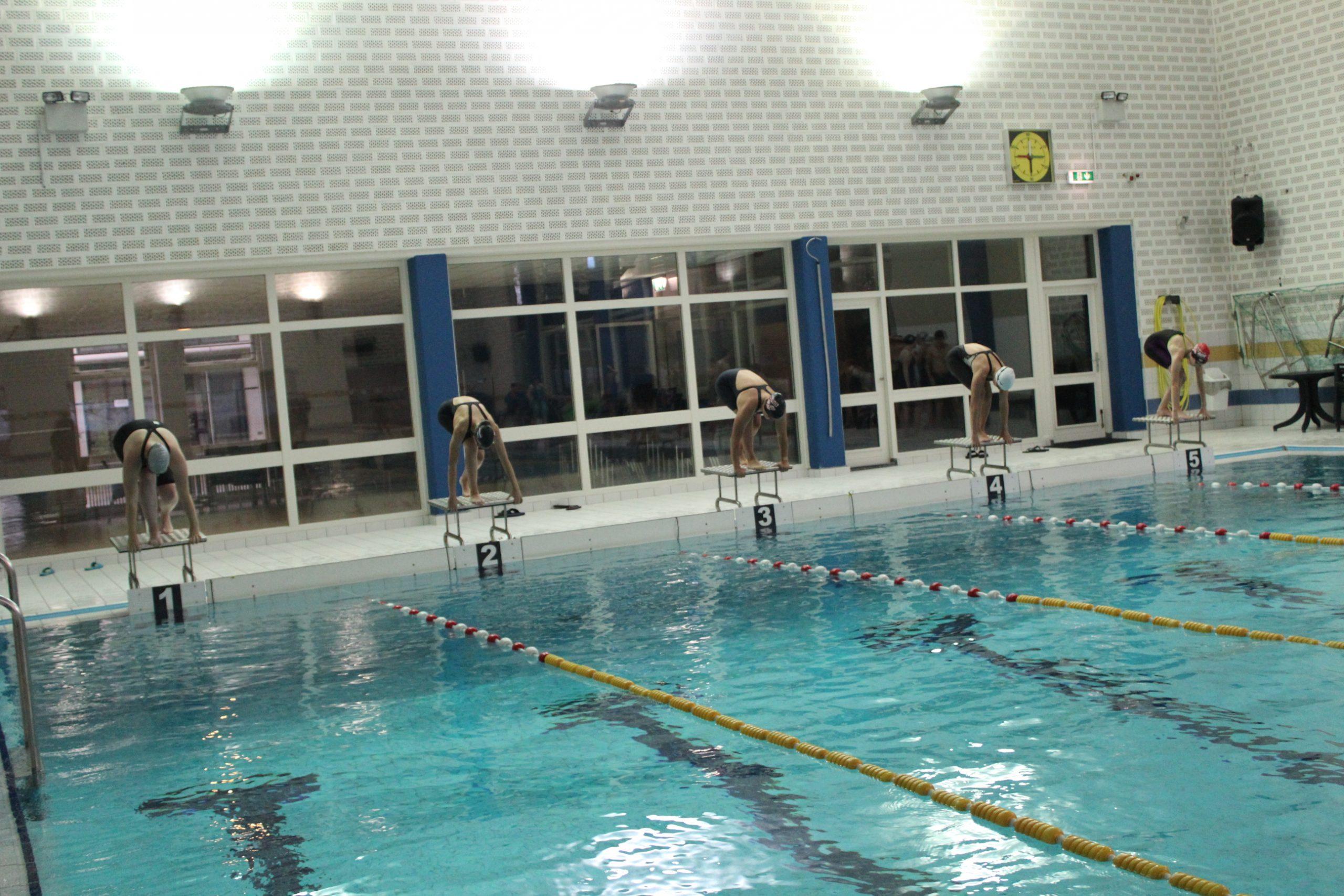 Wedstrijdzwemmen bij Afnorth